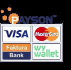 Betalning med Payson